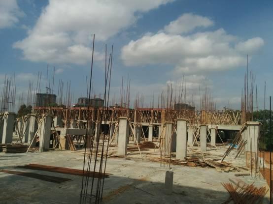Hilife Triflora Construction Status