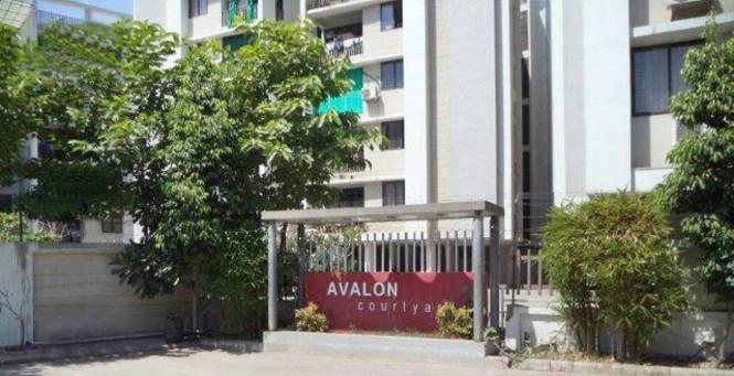 Avalon Avalon Courtyard Amenities