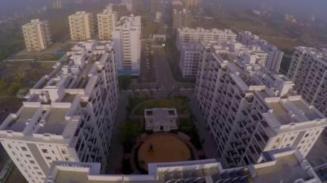 Kolte Patil Ivy Apartment E V And VI Elevation