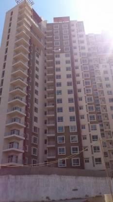 Patel Smondo 2 Construction Status