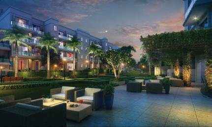 DLF Kings Court Elevation