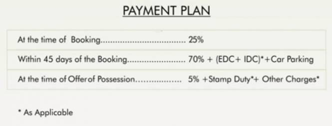 Tulip White Payment Plan