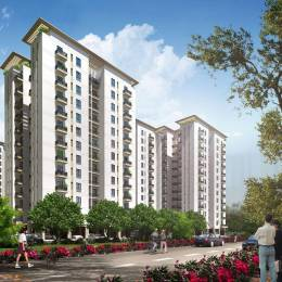 DLF Maiden Heights at My Town Elevation