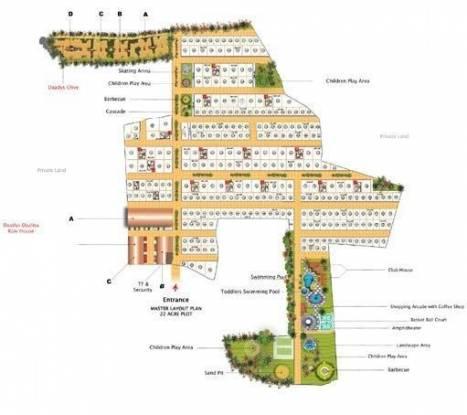 Daadys Olive Site Plan