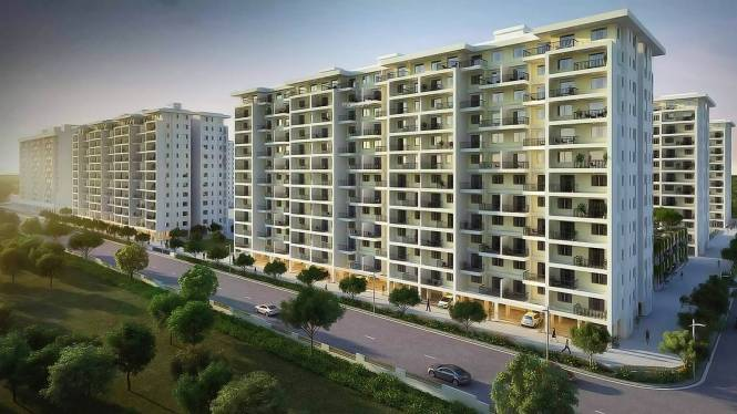 Kolte Patil IVY Apartments Elevation