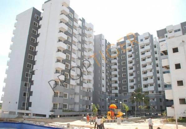 Mahaghar Elixir Construction Status