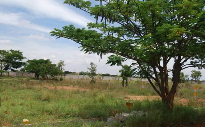Aashrayaa Aero Springs Elevation
