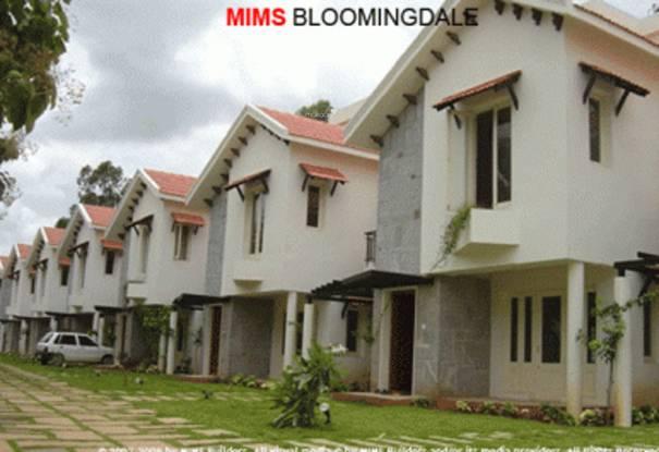 MIMS Bloomingdale Elevation