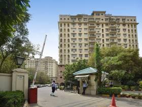 1,376 sq ft 3 BHK + 3T Apartment in DLF Ridgewood Estate