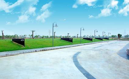 BPTP Amstoria Lutyens Plots Main Other