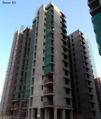 Shree Flora Construction Status