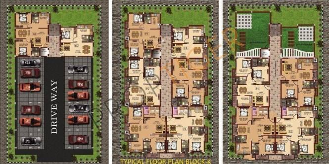 A square Ambrosia Cluster Plan