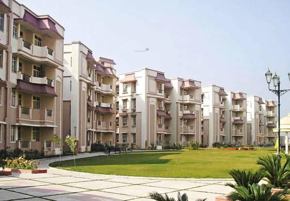 Ashiana Black Gold Apartments Elevation