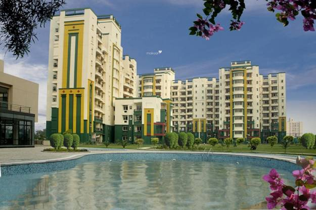 Omaxe NRI City Elevation