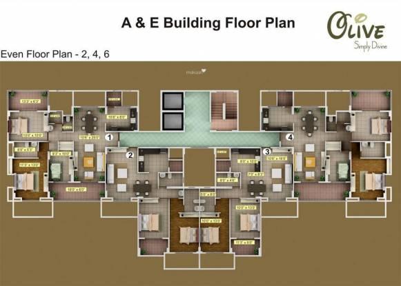 Mind Olive Cluster Plan