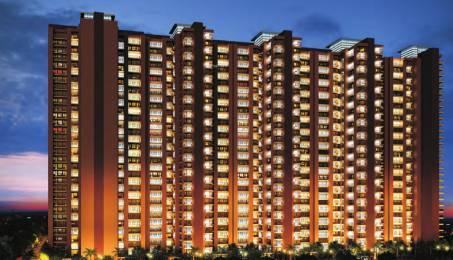 RG Luxury Homes Elevation