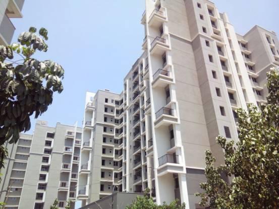 Sobha Ivory Construction Status