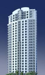 Jaycee Bhagtani Sapphire Elevation