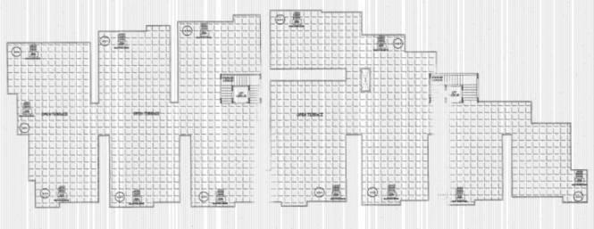 Ankshu Wisteria Cluster Plan