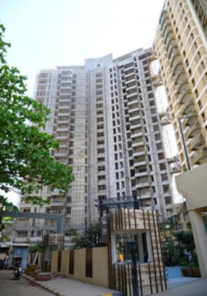 Kalpataru Siddhachal Elite Construction Status