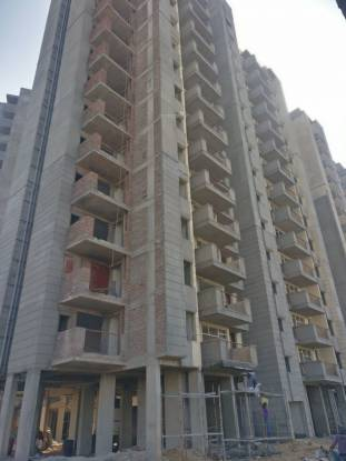 Terra Elegance Construction Status