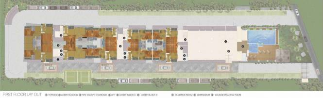 Gina Shalom Cluster Plan