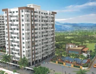 DNV Elite Homes Elevation