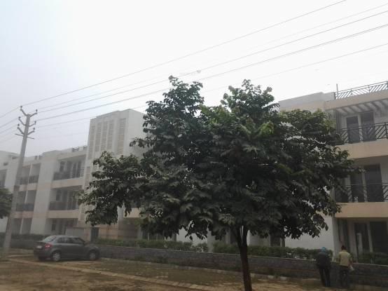 Puri VIP Floors Construction Status