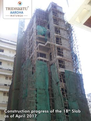 Tridhaatu Aaroha Construction Status
