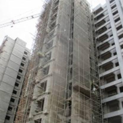 MJR Clique Hydra Construction Status