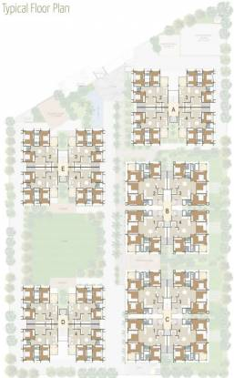 Deep Heliconia Cluster Plan