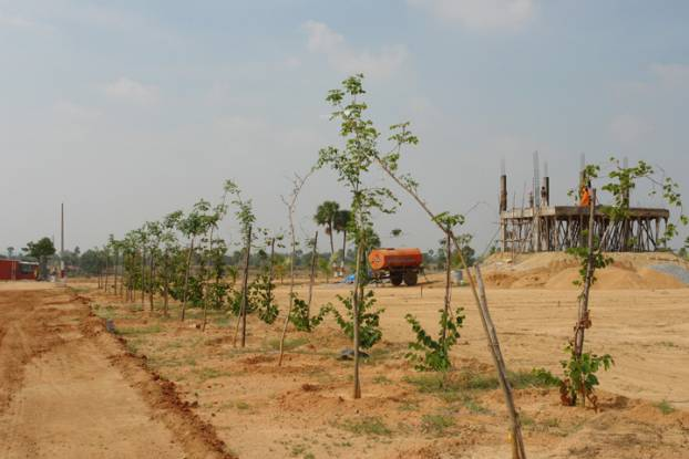 Nature Paradise Construction Status