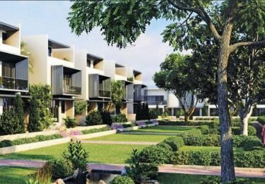 Ireo Oyster Villas Elevation