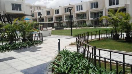 Arvind Expansia Villa Elevation