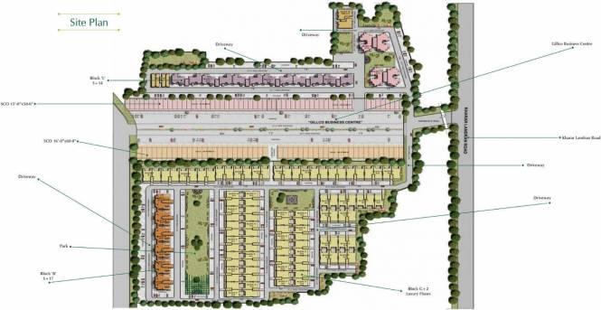 Gillco Palms Site Plan
