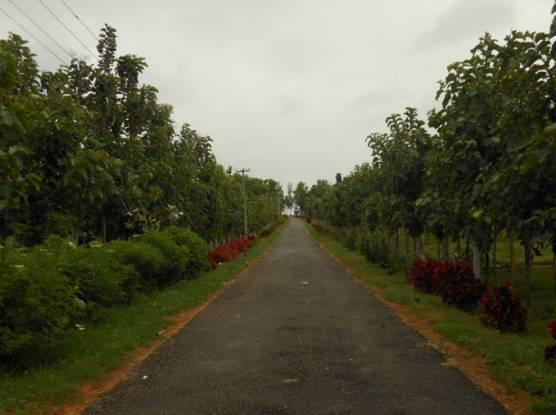 YEStates Antillia Teak Garden Main Other