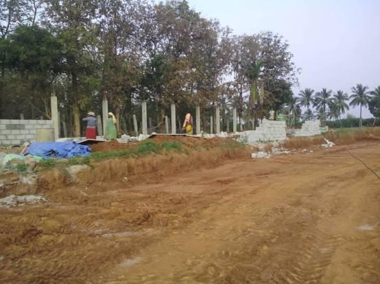 Peninsula Solitaire Construction Status