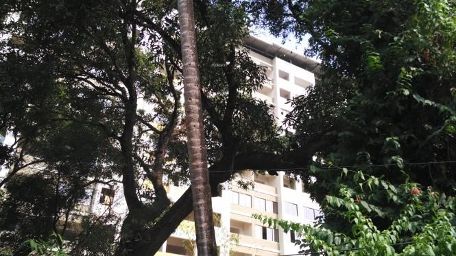 Divakar Diya Residency Construction Status