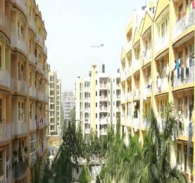 Trishla Plus Homes Elevation