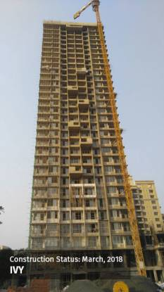 Courtyard Construction Status