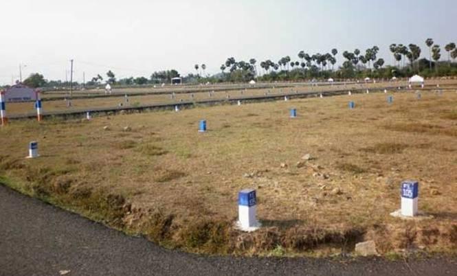 Vikram Rangers Grove Main Other