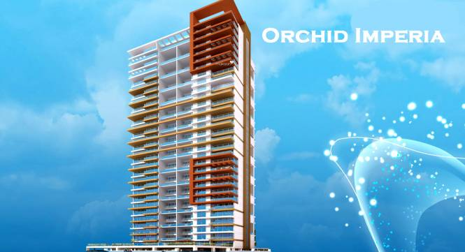 Sunny Orchid Imperia Elevation