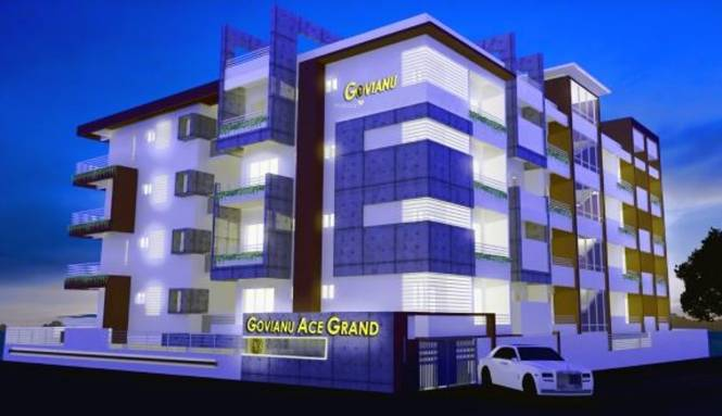 Govianu Ace Grand Elevation