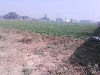 1000 sqft, Plot in Builder Prayagance town Lucknow Road, Allahabad at Rs. 7.5100 Lacs