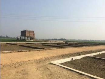 3200 sqft, Plot in Shine Arise Velvet Rohaniya, Varanasi at Rs. 44.0000 Lacs