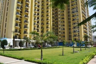 2050 sqft, 3 bhk Apartment in Maxblis Grand Kingston Sector 75, Noida at Rs. 94.0000 Lacs
