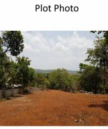 20990 sqft, Plot in Builder Project Porvorim, Goa at Rs. 4.0000 Cr