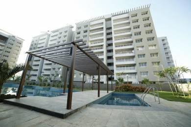 1755 sqft, 3 bhk Apartment in Alembic Samsara Apartment Chhani, Vadodara at Rs. 95.0000 Lacs