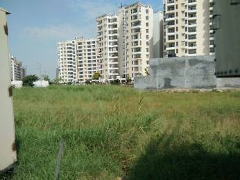2250 sqft, Plot in Builder Project Sector 117 Mohali, Mohali at Rs. 40.0000 Lacs
