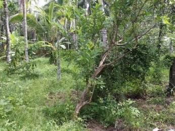 4356 sqft, Plot in Builder Project Chemmakkad Kuzhiyathukavu Road, Kollam at Rs. 30.0000 Lacs